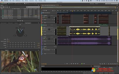 Captură de ecran Adobe Audition pentru Windows 10