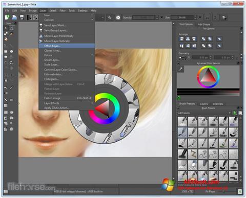 Captură de ecran Krita pentru Windows 10